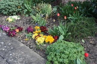 Out Patient Garden